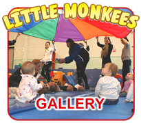 Little Monkees Gallery