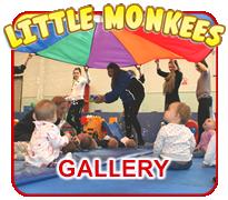 Little Monkees Gallery